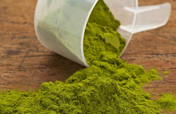 organict-hemp-protein-powder