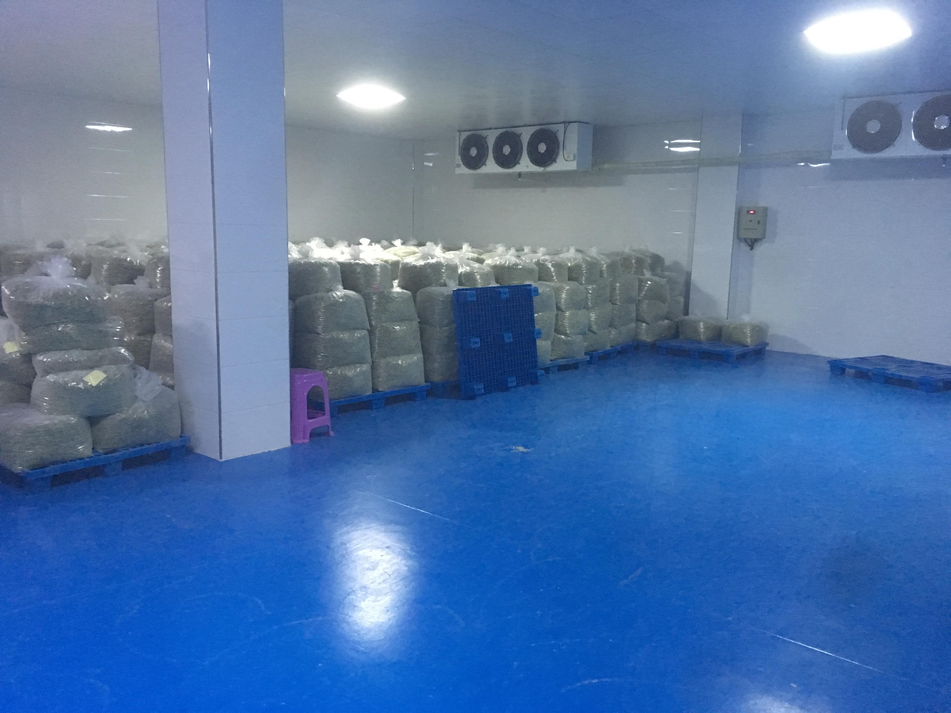 cauliflower powder factory