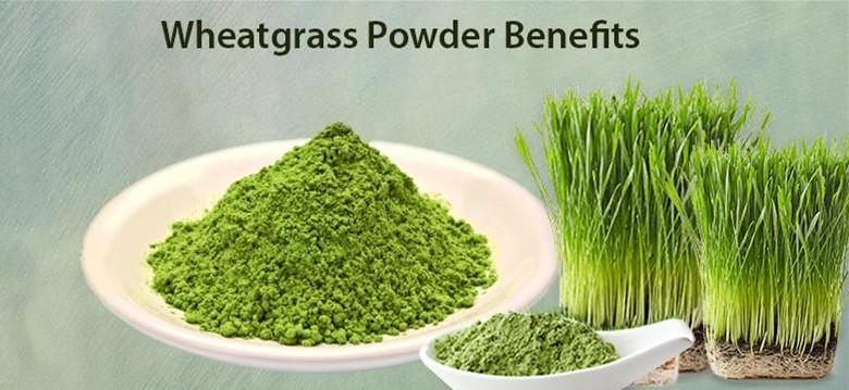 Wheat grass powder benefits_