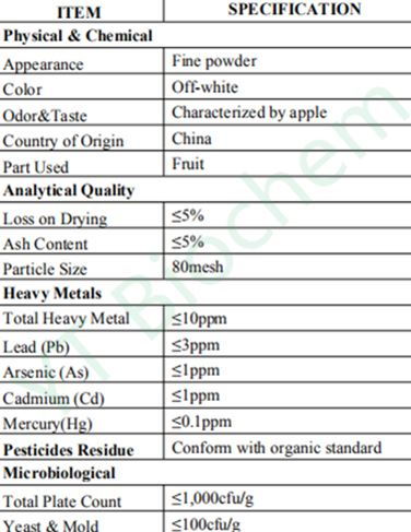 Specification of Organic Apple Powder