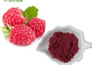organic Freeze Dried Raspberries Powder