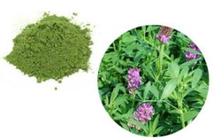 100% Organic Alfalfa Powder