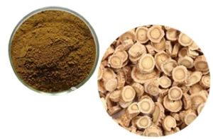 Astragalus root/astragali radix (slice, cuts, powder, extract powder)