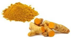 Turmeric root/radix curcumae (whole, slice, cuts, powder, extract powder)