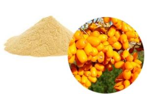 Seabuckthorn fruit (whole, cuts, powder, extract powder, juice powder)