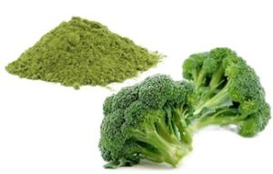 Broccoli powder/granule/chopped