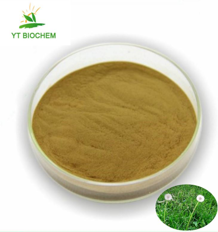 Natural Dandelion Root Extract