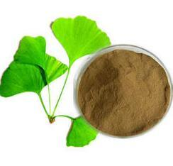 Ginkgo Extract