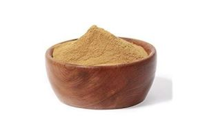 Organic Burdock Root Powder