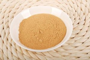Organic Ginseng Root Extract Powder