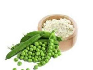 Pea Protein Powder Isolate