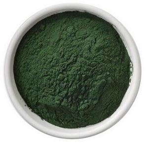 Powder Chlorella