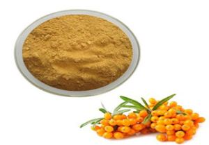 Sea Buckthorn Plant