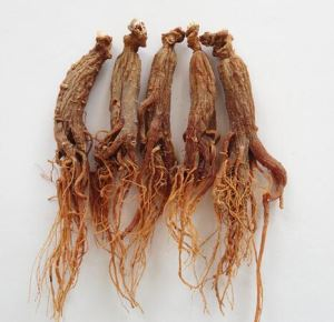 Organic Red Ginseng Entire Roots