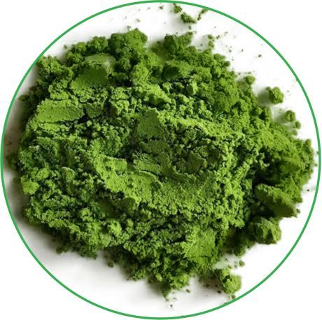 vegan matcha powder