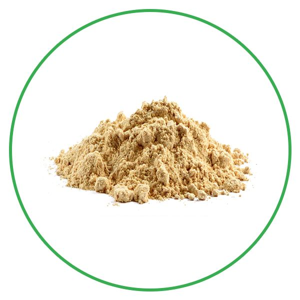 Organic Maca Extract Powder
