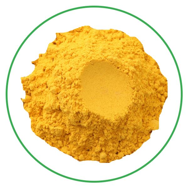 Organic AD Dehydrated Pumpkin Powder