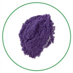 Black Wolfberry Powder