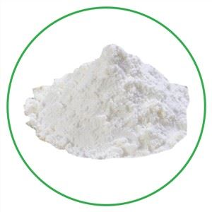 Conventional Coconut Powder