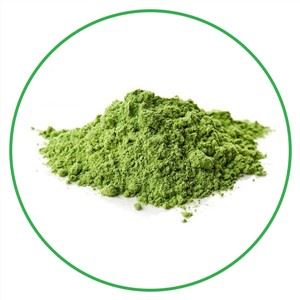 Dehydrated Broccoli Powder