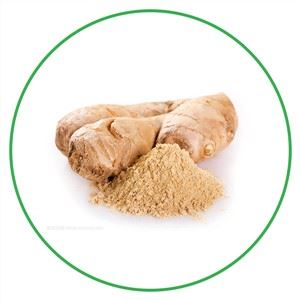 Organic Whole Ginger Root Extract Powder