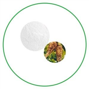 Inulin Powder Chicory Root