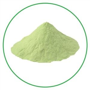 Kiwi Fruit Powder