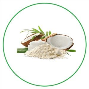 Organic MCT Oil Powder