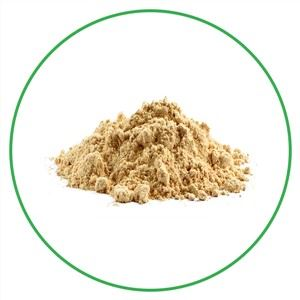 Organic Dandelion Root Extract Powder