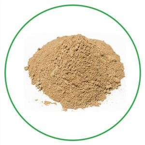 Organic Lion's Mane Mushroom Extract Powder
