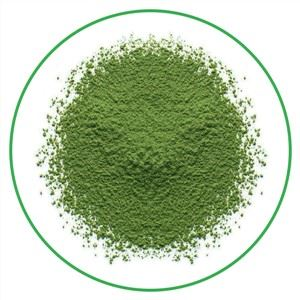 Instant matcha powder