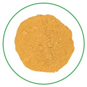 Sea Buckthorn Fruit Powder