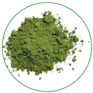 Raw wheat grass powder