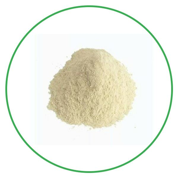 White Ginseng Powder